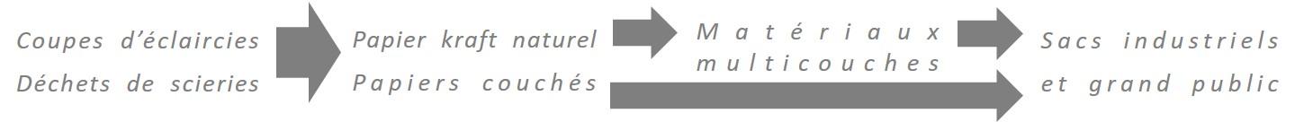 BOIS, PAPIER, SACS et FLEXIBLE : 4 activités complémentaires & intégrées dans la filière